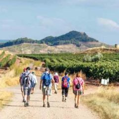 Walkers on the Camino de Santiago Pilgrimage