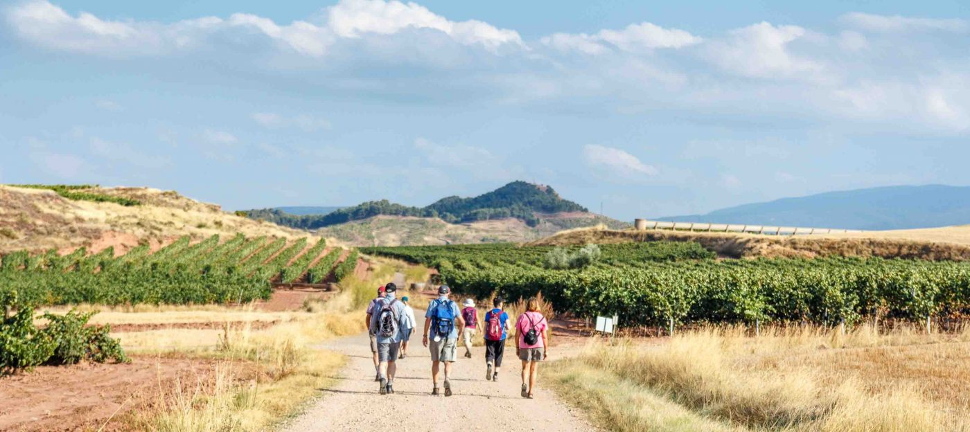 Walkers on the Portuguese Camino
